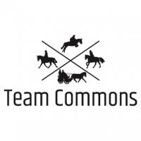 Team Commons