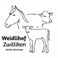 Weidlihof Zwillikon