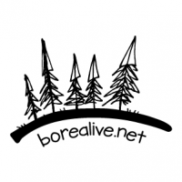 borealive.net